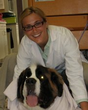 Woodinville Veterinary Hospital and Mobile Services | 13317 NE 175th St Ste P, Woodinville, WA, 98072 | +1 (425) 481-1184